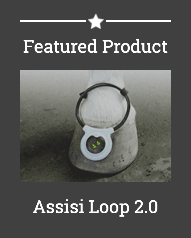 Assisi Loop Product