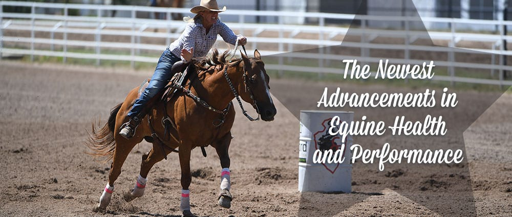 newest-advancements-in-equine-health